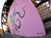 _gowanus-superfund-octo-fisheye-lowtonky.jpg